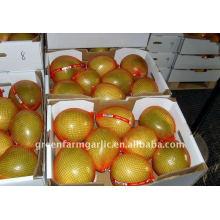 Nouveau miel pomelo 2011 Corps