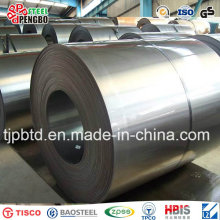 Folha de bobina de aço galvanizado por imersão a quente (ISO9001: 2008; BV; SGS)