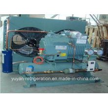 Bizter Brand Condensing Unit for Cold Room