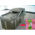 Dried Dates Food DZ600/2S Wonderful Vacuum Packer