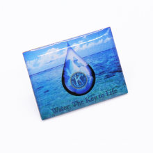 Eco-Friendly Style Competitive Price Metal Epoxy Lapel Pin Badge
