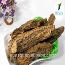 Polvo de extracto de hierba 100% Pure Natural Songaria Cynomorium / Cynomorium songaricum