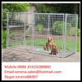 Vente chaude en plein air soudé maille clôture temporaire pour les chiens