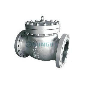 Cast baja Check Valve