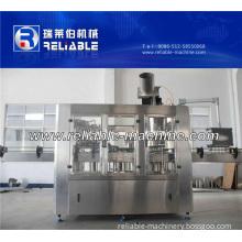 Hot Bottling Production Line/Filling Machine for Fruit Juice