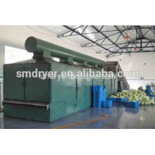 DW Series Mesh-belt Dryer for drying vegetable and fruits