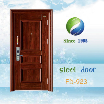 China Newest Develop and Design Single Steel Security Door (FD-923)