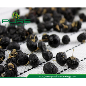 FD -Freeze Kering goji berry hitam / Wolfberry