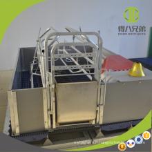 Caisse de mise bas à vendre équipement de porc pour la ferme avicole des truies