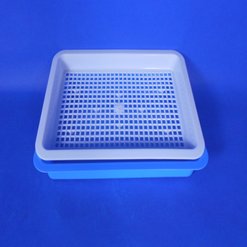 Skyplant PVC seedling tray for Indoor Planting