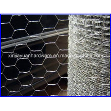 Filetage en fil hexagonal galvanisé pour filet de pourltry