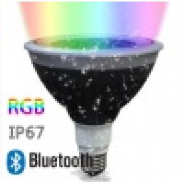 LED Spotlight Rgw PAR38 with Wireless Control