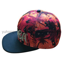 Hot Selling Snapback Sports Hat, New Baseball Era Cap
