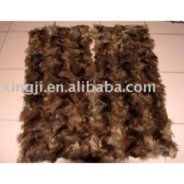 Plaque de fourrure de patte avant de raton laveur