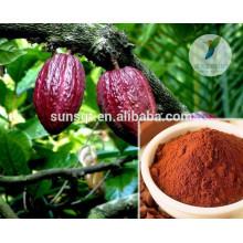 Extrait de théobroma cacao organique de la meilleure qualité avec theobromine