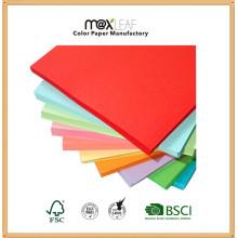 Impressão de papel em cores Papel offset com pasta de madeira
