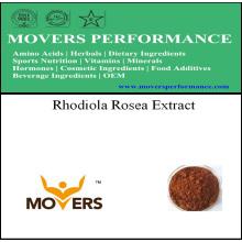 Organic Natrual Plant Extract - Rhodiola Rosea Extract