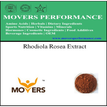 Extrato de planta natural de Natrual - extrato de Rhodiola Rosea