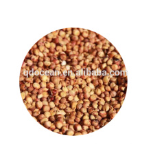 Bulk high quality red sorghum with reasonable price and fast delivery !!