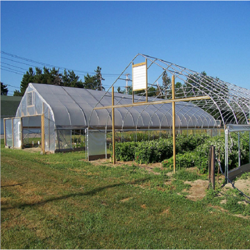 Struktur Gothic High Quality Arch Film Greenhouse