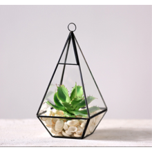 Wholesale Martini Glass Vases Handblown Glass Terrarium