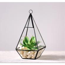 Atacado vidro Martini Vasos Handblown Glass Terrarium