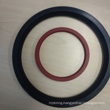 Common Rubber Water Seal