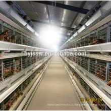 Клетка цыпленка фермы, слой яиц птицы в Фиджи