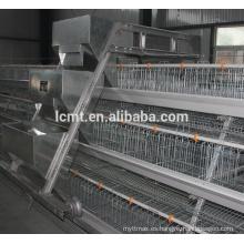 Venta caliente de equipos automáticos de avicultura para pollo de engorde y criador