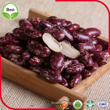 2016 New Crop Red Light Speckled Kidney Beans