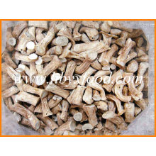 Chinese Exporter of Dried Mushroom Shiitake Leg