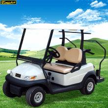 Voiture de golf électrique populaire Chine pas cher avec 2 sièges