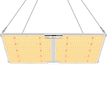 LED Grow Light For Vegetables And Fruit