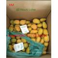 Mango-Ripener-Ethylen / Bananen-Ripener für Indien-Markt