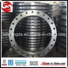 OEM Service Forging Products Carbon Steel Flanges
