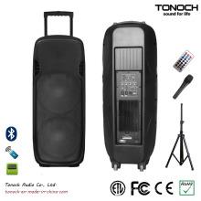 Hot Sales dupla 15 polegadas PA Speaker plástico (ES215UB)