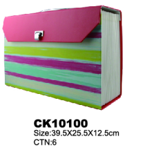 Customized Paper Expanding File Case