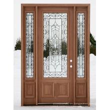 Puerta de entrada exterior de lujo (SC-1007)