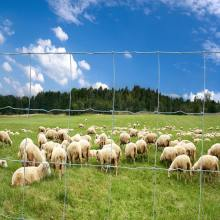 High Tensile Livestock Animal Farm Fence