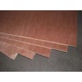 Packing Plywood Veneer Boards