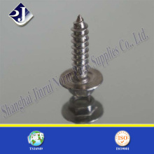Tête hexagonale Hot Sale Tapping Screw