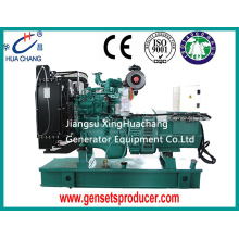 OEM for Cummins Diesel Generator 60KVA Cummins Diesel Generator Set supply to British Indian Ocean Territory Manufacturer