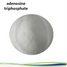 Kaufen Sie online Wirkstoffe Adenosintriphosphat Pulver