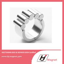 Hochwertige kundenspezifische Zylinder Permanent NdFeB/Neodym-Magneten für Motoren