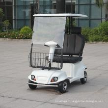 Scooter de golf électrique à piles au plomb confortable (DL24800-6A / 6B)