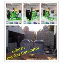 Générateur de gaz à haute efficacité de générateur de gaz de l'CE Ce Prix