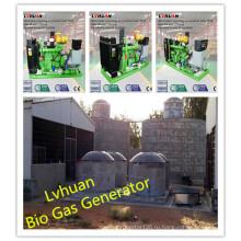 ИСО CE газовый генератор высокая эффективность биогаза генератор Цена
