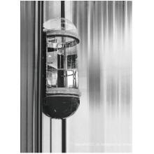 Mrl 1350kg Semi-Circle elevadores panorâmicos (LL-030)