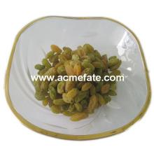 Pastel de uva verde secado al sol de alta calidad con semillas de xinjiang
