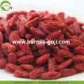 Comprar Natural Fruit Anti Cancer Lycium Chinense